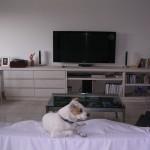 Salotto moderno bianco prodotto dalla falegnameria rd arredamenti di roma